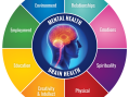 Brain Health and Mental Excellence