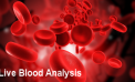 Quantum Entanglement – Your Relationship With Your Blood